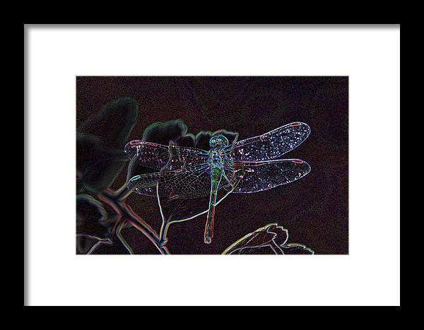 Digital Art Framed Print featuring the photograph Neon Dragon Fly by Don and Sheryl Cooper