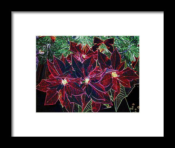 Flowers Framed Print featuring the photograph Neon Poinsettias by Nancy Mueller