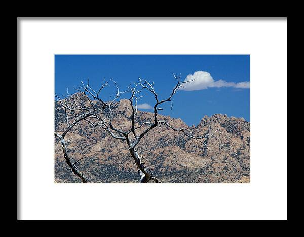 Framed Print featuring the photograph New York Mountains #1 by Eric Rosenwald