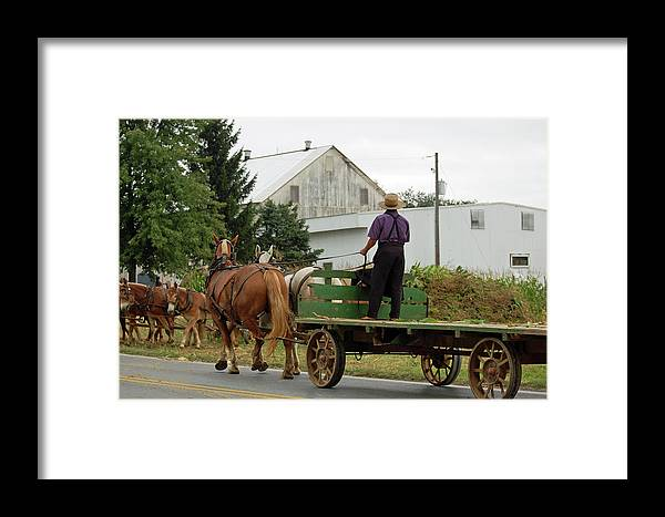 Amish Framed Print featuring the photograph Next Wagon's Ready by Joyce Huhra