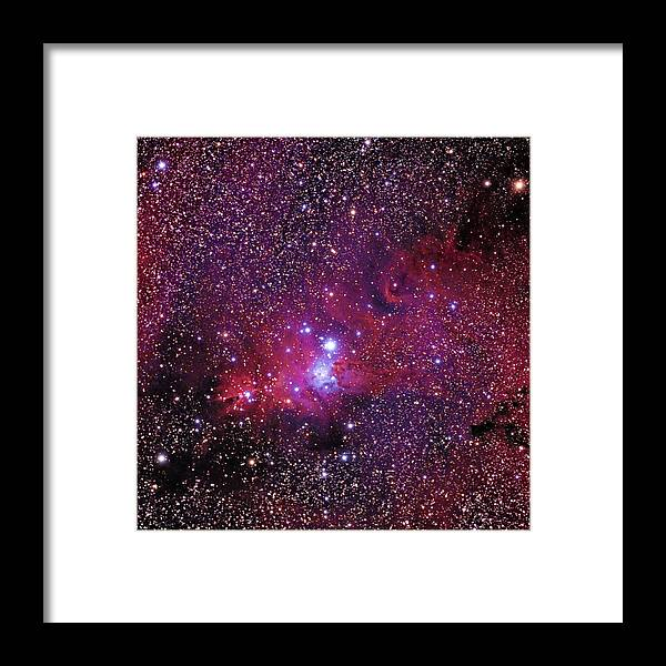 Christmas Tree Cluster Framed Print featuring the photograph Ngc 2264 The Christmas Tree Cluster In Monoceros by Alan Vance Ley
