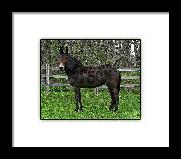 Framed Print featuring the photograph Nifty Fifty Profile by Deborah Johnson