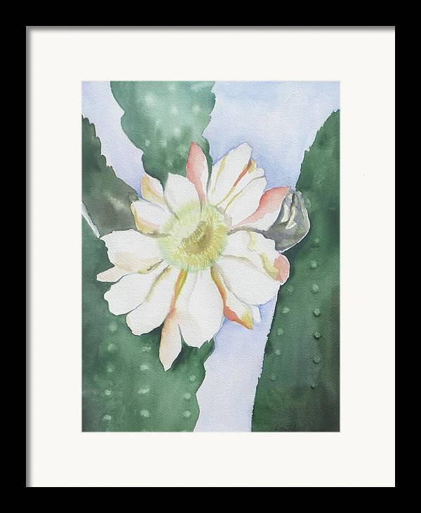 Cactus Flower Framed Print featuring the painting Night Bloomers by Kathy Mitchell