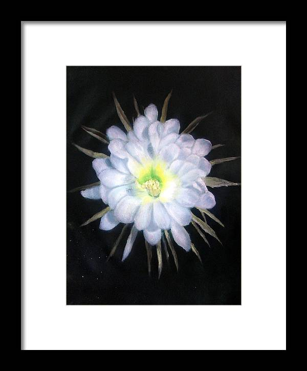 Night Framed Print featuring the painting Night Bloomig Cerus by Darlene Green