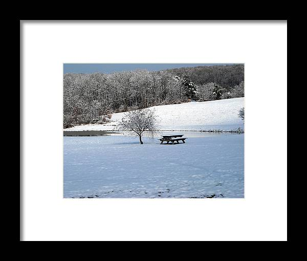 Pond Framed Print featuring the photograph No Picnic Today by George Jones