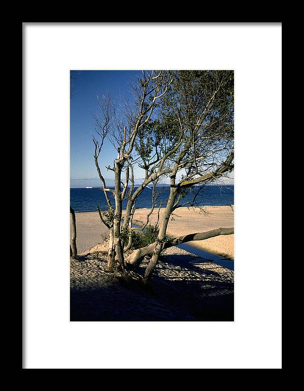 Denmark Framed Print featuring the photograph Nordic Beach by Flavia Westerwelle