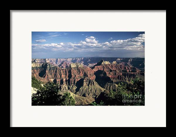 Grand Canyon; National Parks Framed Print featuring the photograph North Rim by Kathy McClure