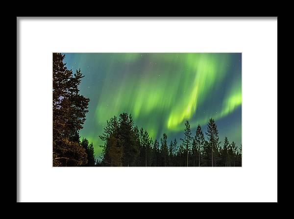 Landscape Framed Print featuring the photograph Northern Lights Sapmi Forest Karasjok Norway by Adam Rainoff