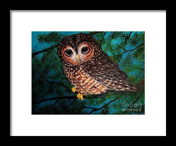 Owl Painting Framed Print featuring the painting Northern Spotted Owl by Nick Gustafson