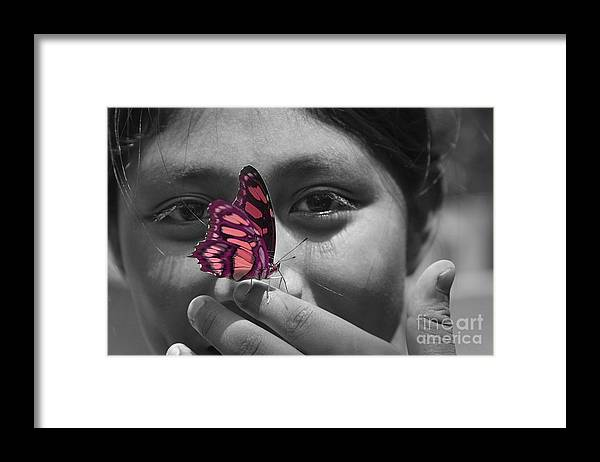 Butterfly Framed Print featuring the photograph Nosey by Katherine Morgan