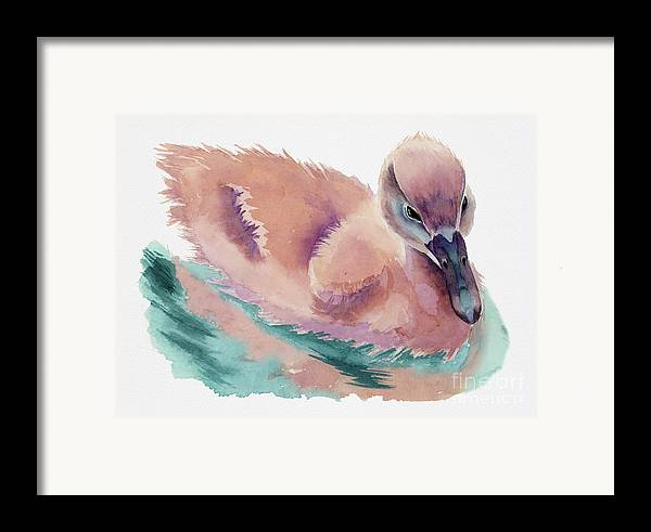 Watercolor Framed Print featuring the painting Not An Ugly Duckling by NamiBear