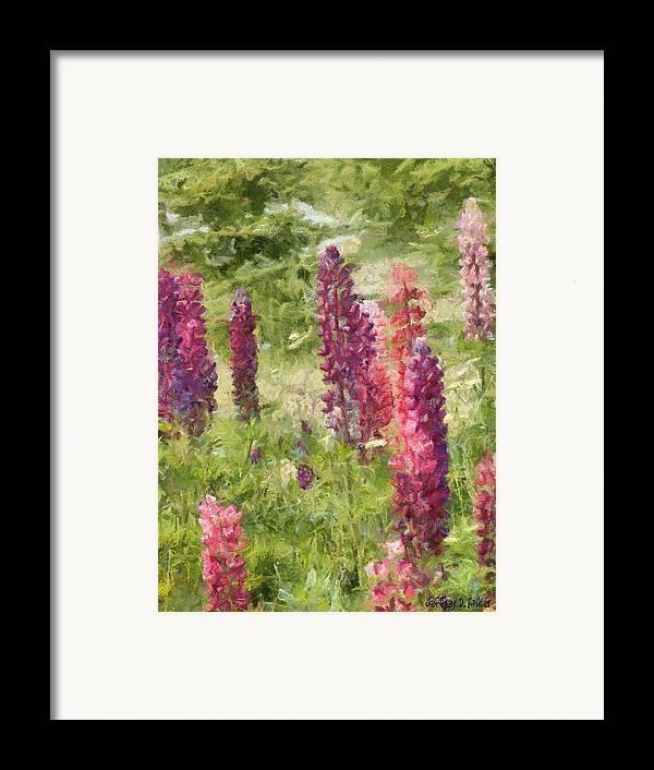 Nova Scotia Framed Print featuring the painting Nova Scotia Lupine Flowers by Jeff Kolker