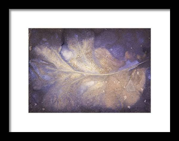 Jan Framed Print featuring the photograph Number 28 by Jan Durham
