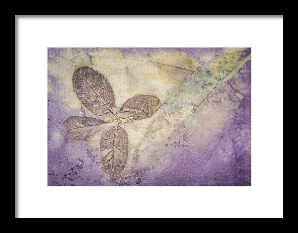 Jan Framed Print featuring the photograph Number 34 by Jan Durham