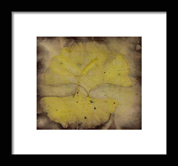 Jan Framed Print featuring the photograph Number 42 by Jan Durham