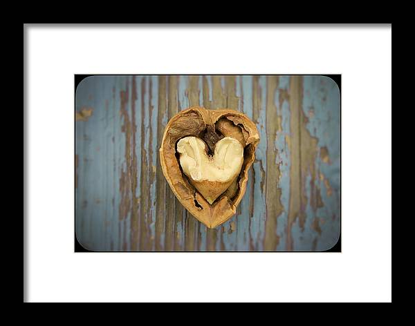 Blue Framed Print featuring the photograph Nutty Love Affair by Lea Seguin