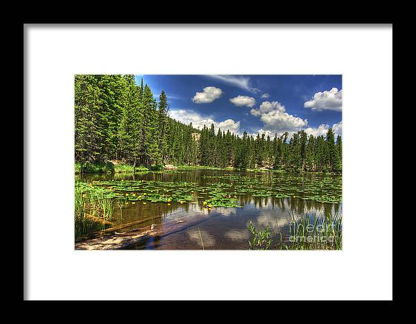 Nymph Framed Print featuring the photograph Nymph Lake 2 by Pete Hellmann