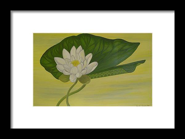 Marinella Owens Framed Print featuring the painting Nymphaea Alba by Marinella Owens
