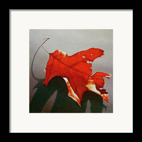Leaf Framed Print featuring the painting Oak Leaf 1 by Timothy Jones
