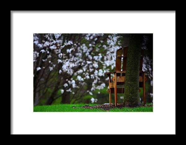 Chair Framed Print featuring the photograph Observation Chair by David Christiansen
