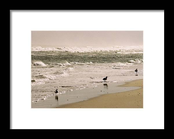 Seascape Framed Print featuring the photograph Ocean Edge by Steve Karol