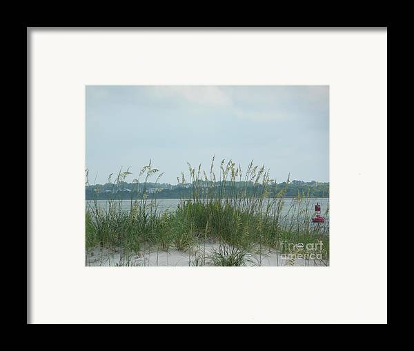 Scenery Framed Print featuring the photograph Oceanview Through Seaoats by Barb Montanye Meseroll