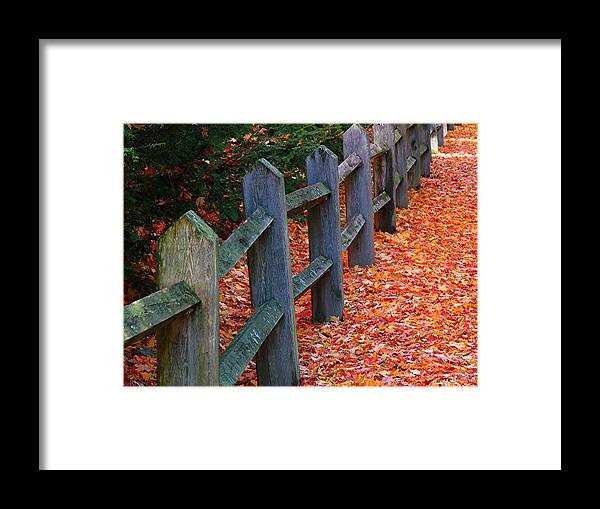 Boston Framed Print featuring the photograph October Light by Juergen Roth