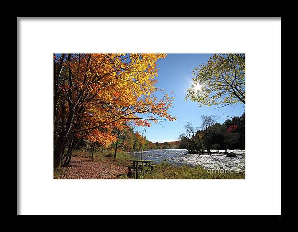 Autumn Framed Print featuring the photograph October Light by Mircea Costina Photography