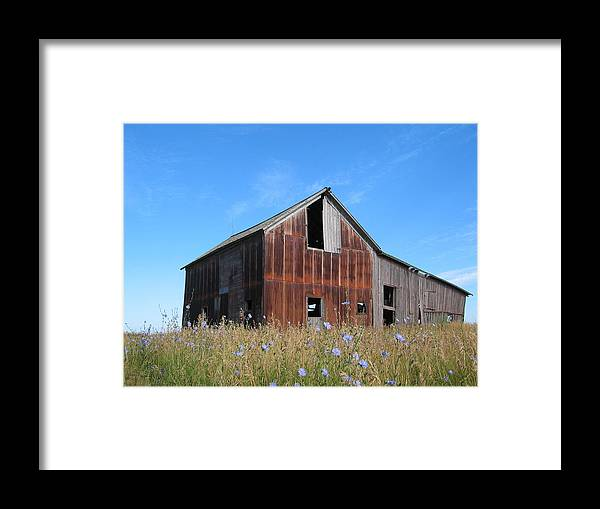 Landscape Framed Print featuring the photograph Odell Barn I by Dylan Punke