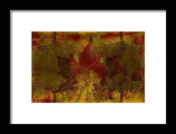 Nature Framed Print featuring the digital art Ok Fall by Shawn Ross