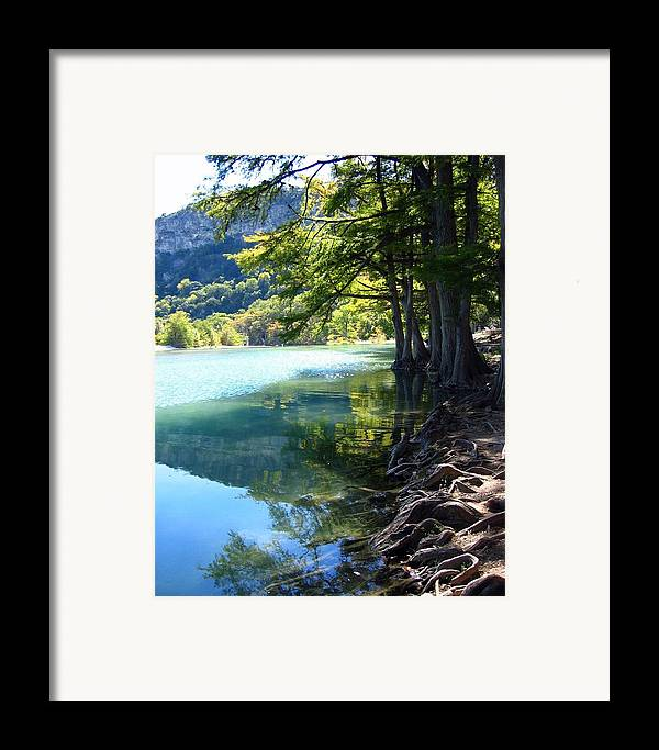 Photograph Framed Print featuring the photograph Old Baldy by Lindsey Orlando