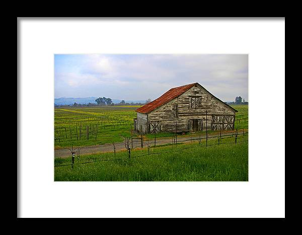 Barn Framed Print featuring the photograph Old Barn In The Mustard Fields by Tom Reynen