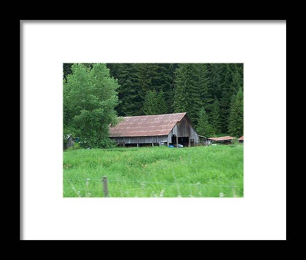 Barn Photo Framed Print featuring the photograph Old Barn In The Trees Washington State by Laurie Kidd