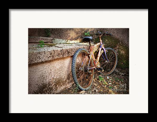 Bicycle Framed Print featuring the photograph Old Bycicle by Carlos Caetano