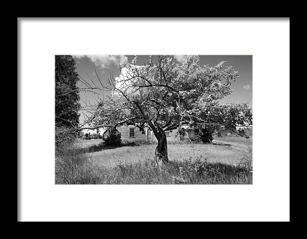 Landscapes Framed Print featuring the photograph Old House 1279 - Hwy 57 by Stephen Mack