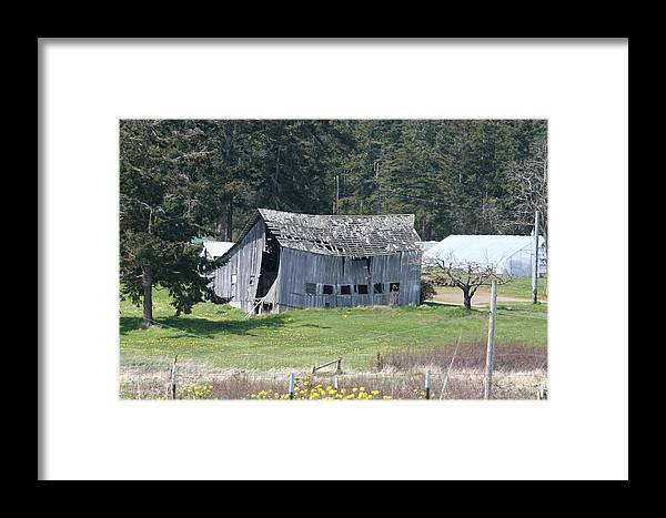 Photograph Framed Print featuring the photograph Old Oak Harbor Barn Ba 9209 by Mary Gaines
