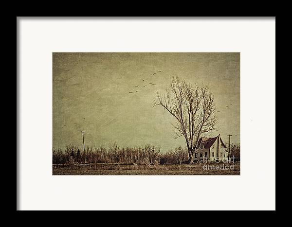Aged Framed Print featuring the photograph Old Rural Farmhouse With Grunge Feeling by Sandra Cunningham