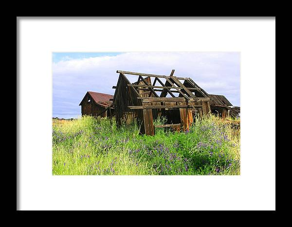 Old Barns Framed Print featuring the photograph Old Shack At The Gorge Ba 3000 by Mary Gaines