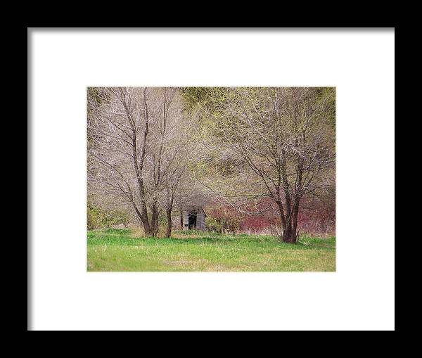Shack Framed Print featuring the photograph Old Shack In The Woods by Angi Parks