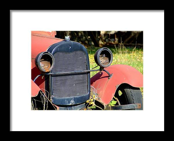 Model A Framed Print featuring the photograph Old Truck by Everett Bowers