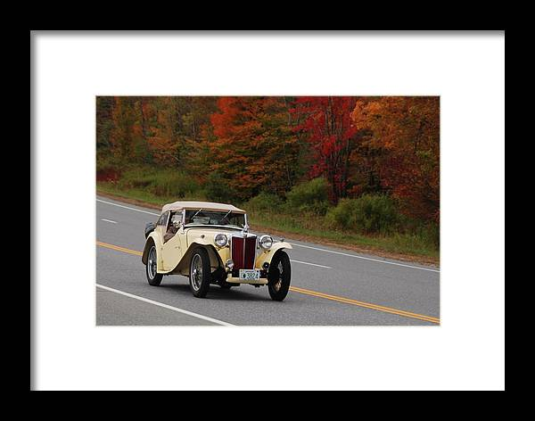 Mg Framed Print featuring the photograph Old Yeller 8168 by Guy Whiteley