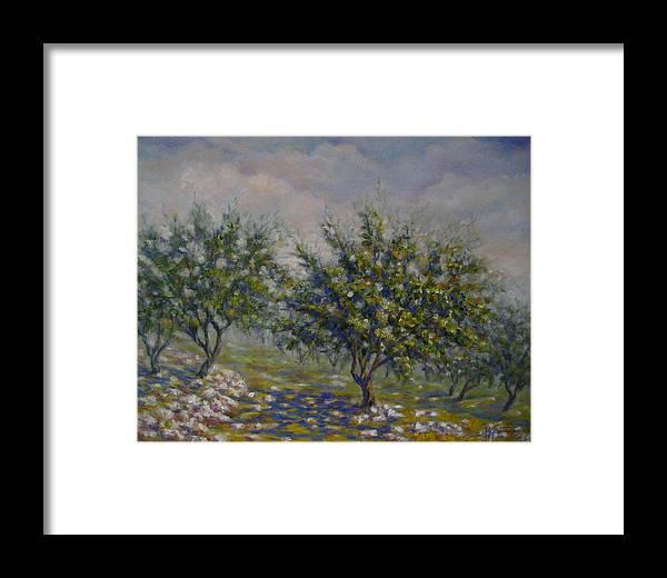 Landscape Framed Print featuring the painting Olive Tree Field by Mirjana Gotovac