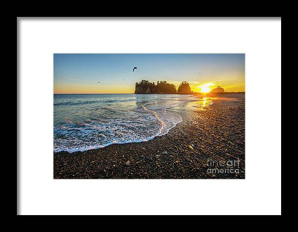 Sunset Framed Print featuring the photograph Olympic Peninsula Sunset by Martin Konopacki