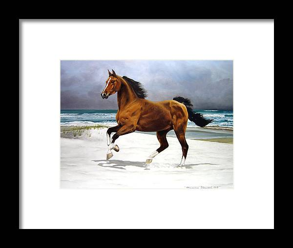 Horse Framed Print featuring the painting On The Beach by Marc Stewart