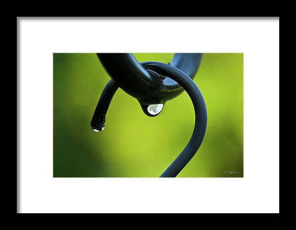 Hook Framed Print featuring the photograph On The Hook by Christopher Holmes