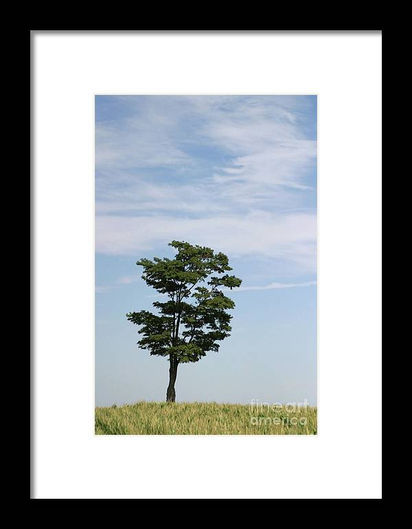 Abstract Framed Print featuring the photograph On The Prairie by Alan Look