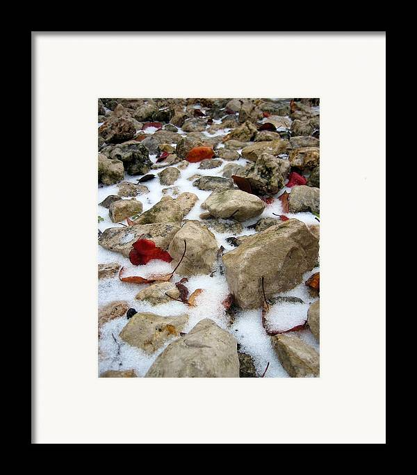 Red Autumn Leaves Framed Print featuring the photograph On The Rocks by Lindsey Orlando
