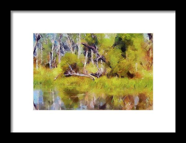 Landscape Framed Print featuring the photograph Once A Great Tree by Cedric Hampton