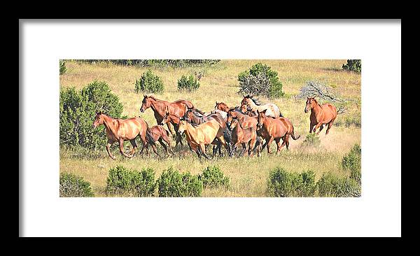 Michael Hamilton Framed Print featuring the photograph One Follows Another by Michael Hamilton