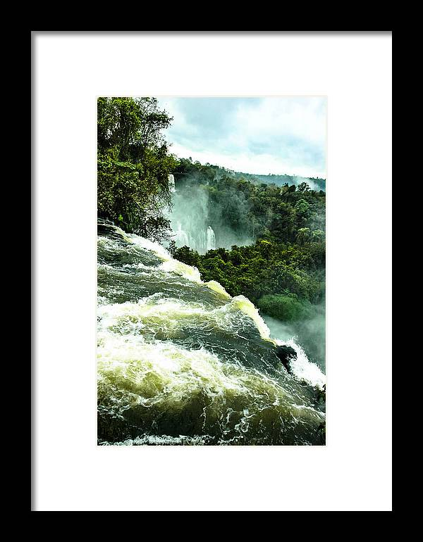 Framed Print featuring the photograph One Of Nature's Beauties by Norman Johnson